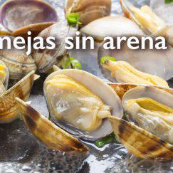almejas-sin-arena1