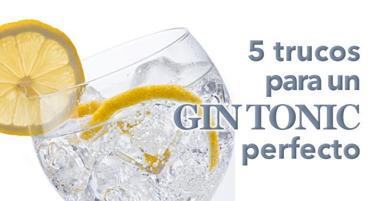 gin tonic perfecto F
