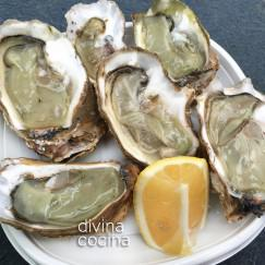 plato-de-ostras