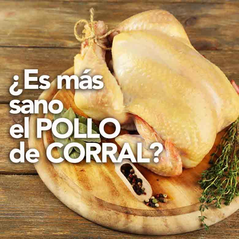 ¿es más sano el pollo de corral?