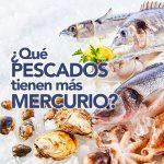 Qué pescados tienen más mercurio