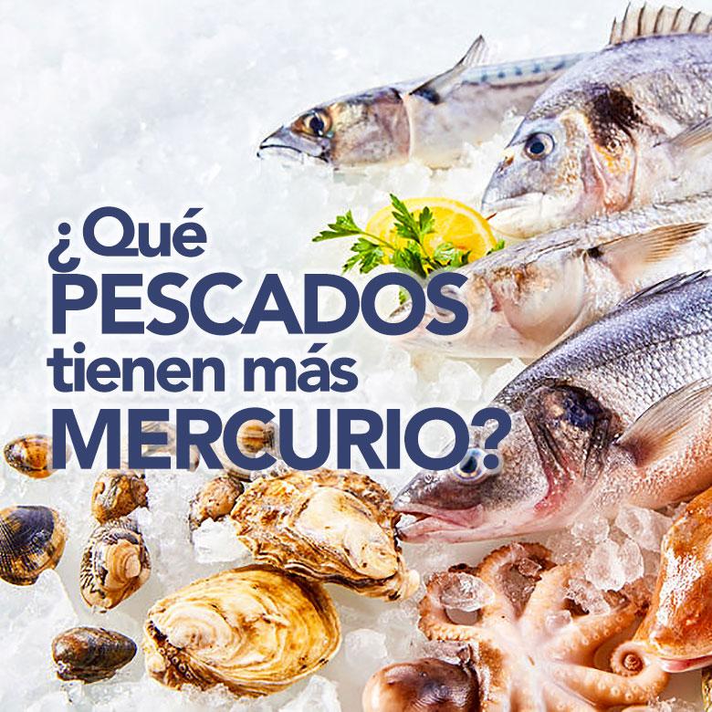 ¿Qué pescados tienen más mercurio?