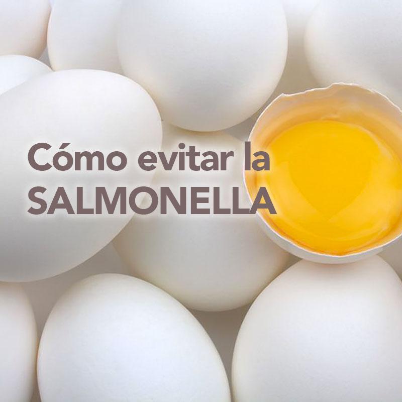 como evitar la salmonella
