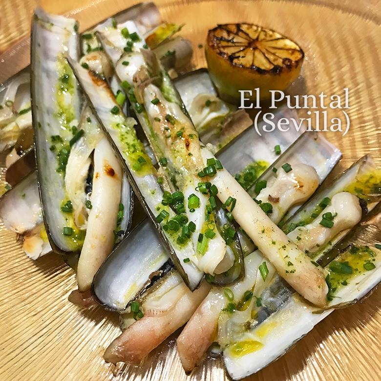 Navajas A La Plancha Cómo Cocinarlas Y Servirlas