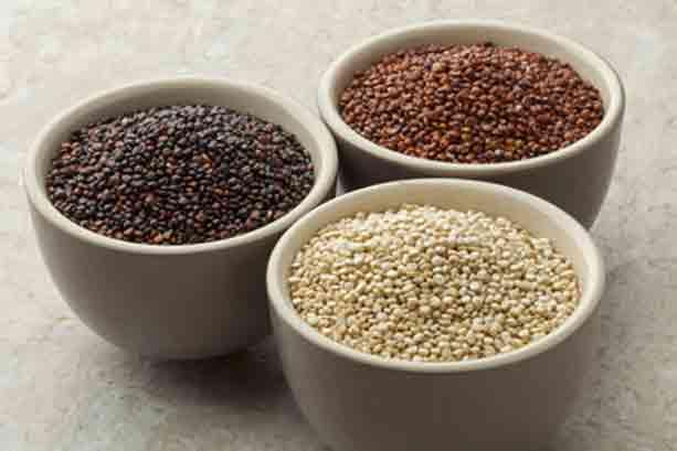 quinoa-variedades