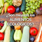 ¿Son mejores los alimentos ecológicos?